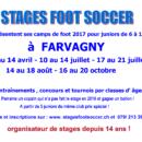 Comme chaque année, des «Stages Foot Soccer» se dérouleront a Farvagny